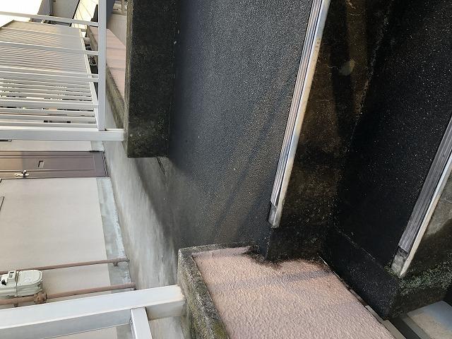 藻や苔が付着した階段